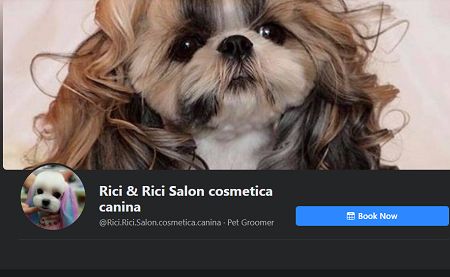 Salon cosmetica canina, Pet Shop